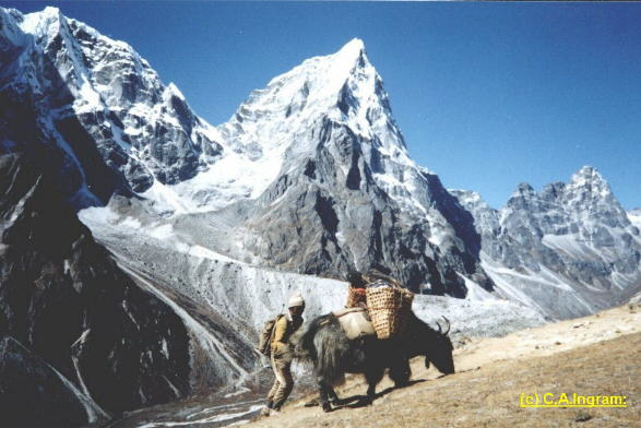 Photo Treks in the Nepal Himalaya