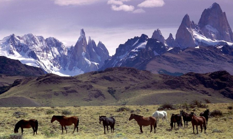 Torres del Paine National Park in the Patagonia Region of Chile, South America
