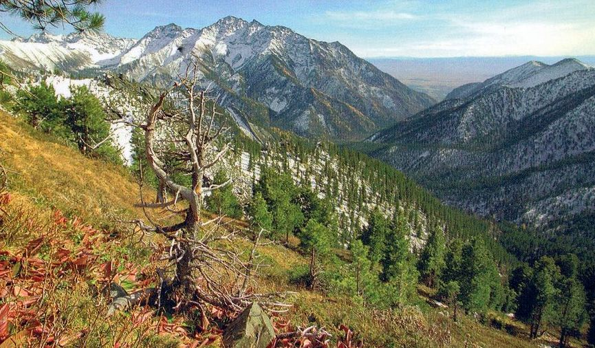 Sayan Mountain Range in southern Siberia of Russia