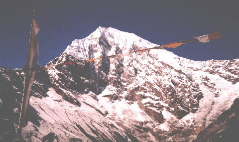 Mt. Langtang Lirung from above Kyanjin in the Langtang Valley