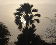 Sunsets on the Atlantic coast of The Gambia in West Africa